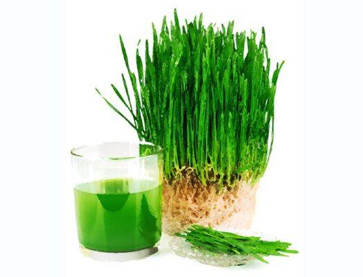Natur Tanya - Vegán zöld búzafű por - 200gr